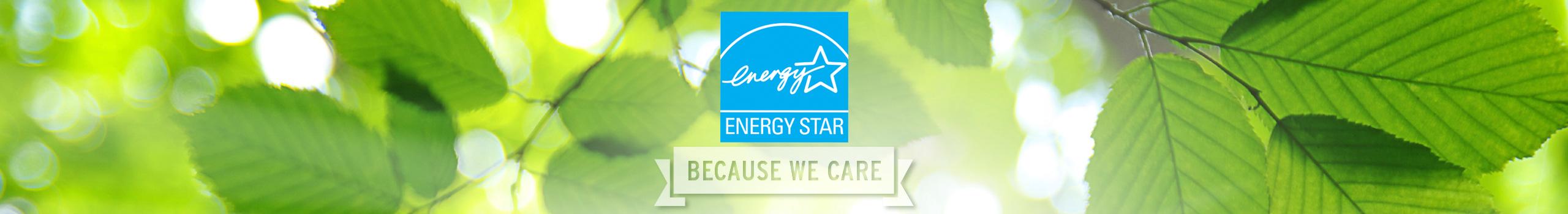 lang_energy-star_banner
